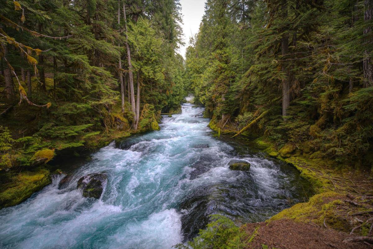 Les impôts de l'Oregon : un paradis fiscal pour les petites entreprises américaines
